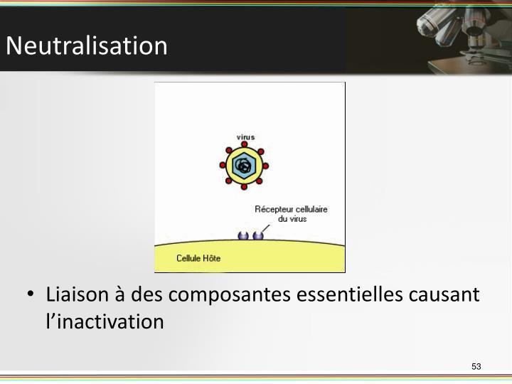 Liaison à des composantes essentielles causant l'inactivation