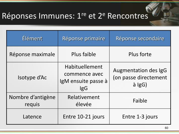 Réponses Immunes: 1