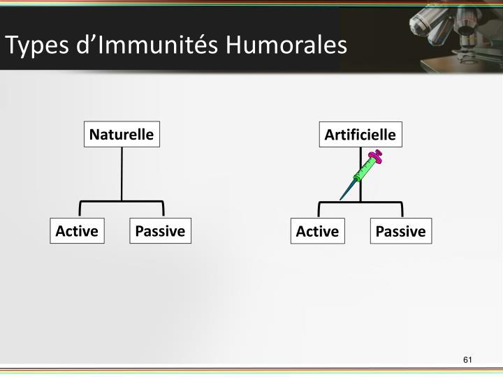 Types d'Immunités Humorales