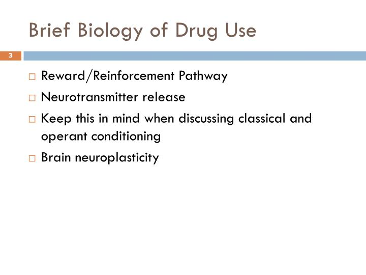 Brief biology of drug use