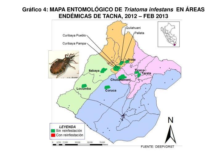 Gráfico 4: MAPA ENTOMOLÓGICO DE