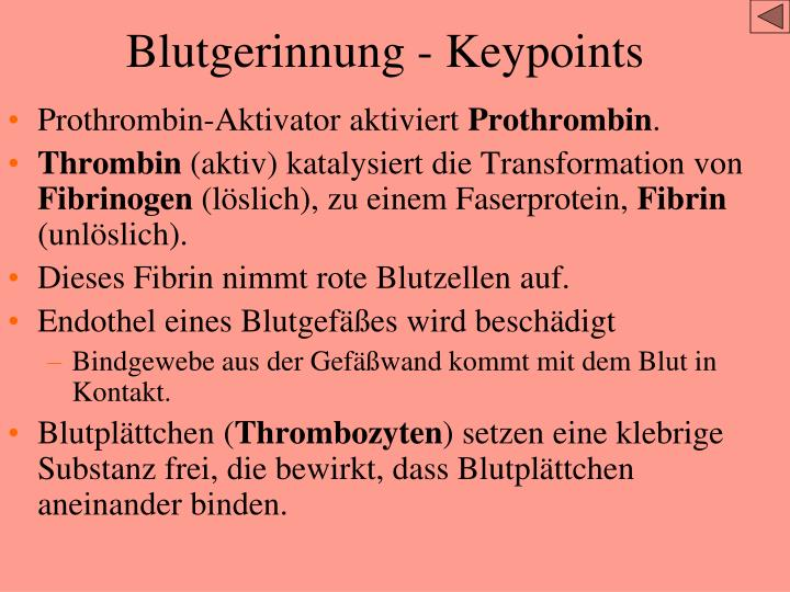 Blutgerinnung - Keypoints