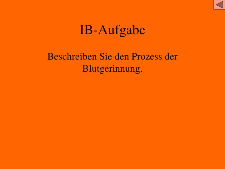 IB-Aufgabe