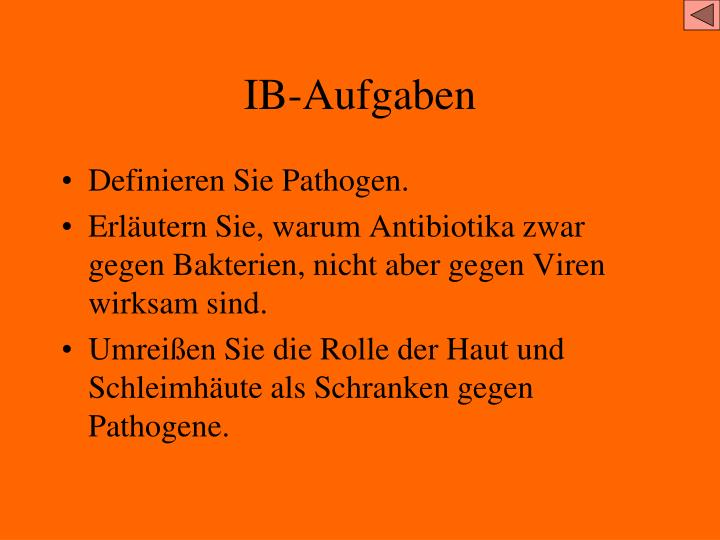IB-Aufgaben