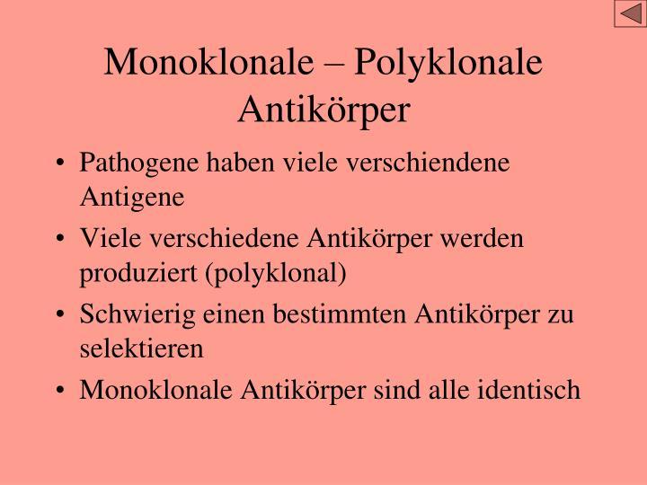 Monoklonale – Polyklonale Antikörper