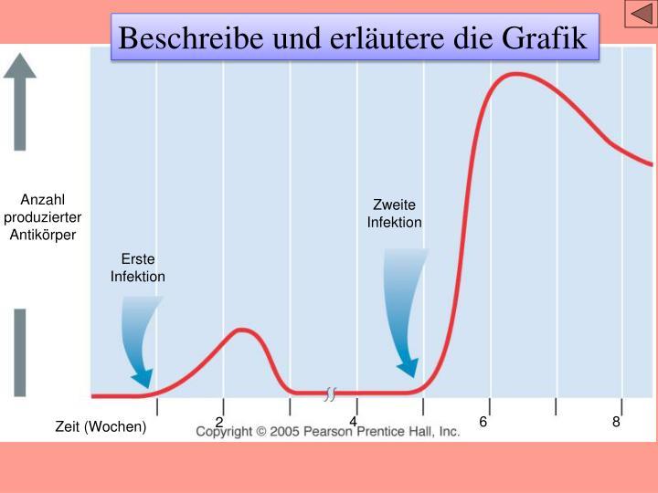Beschreibe und erläutere die Grafik