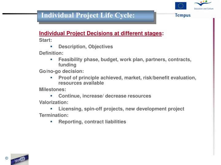 Individual Project Life Cycle: