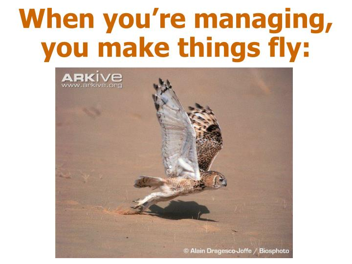 When you're managing, you make things fly: