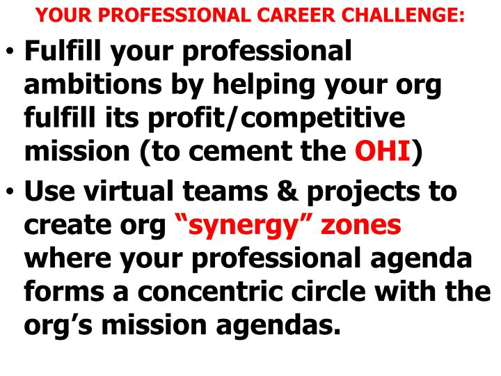 YOUR PROFESSIONAL CAREER CHALLENGE:
