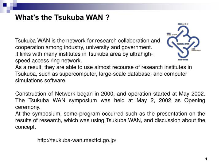 What's the Tsukuba WAN ?