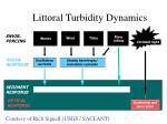 littoral turbidity dynamics