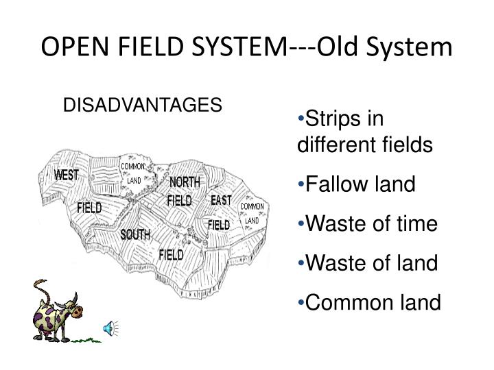 OPEN FIELD SYSTEM---Old System