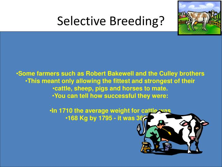 Selective Breeding?