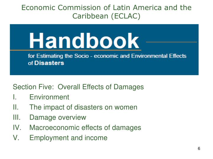 Economic Commission of Latin America and the Caribbean (ECLAC)