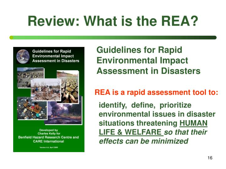 Review: What is the REA?