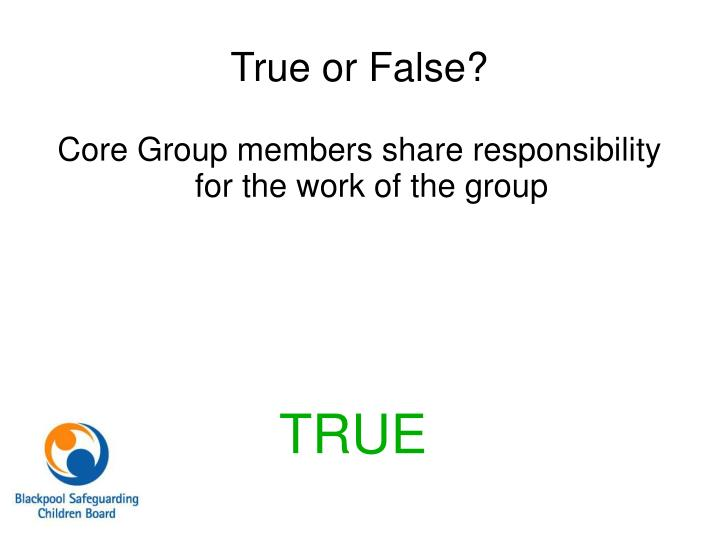 Core Group members share responsibility for the work of the group