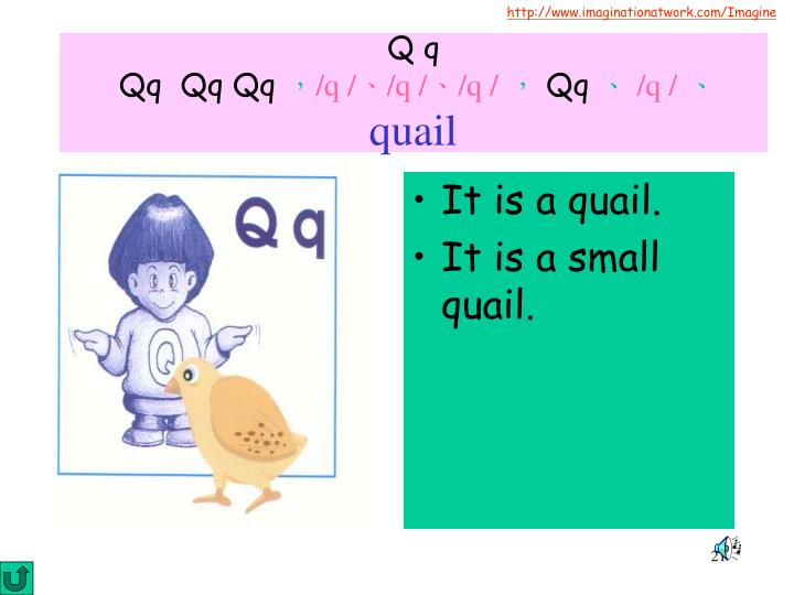 It is a quail.