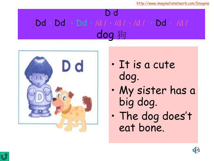 It is a cute dog.