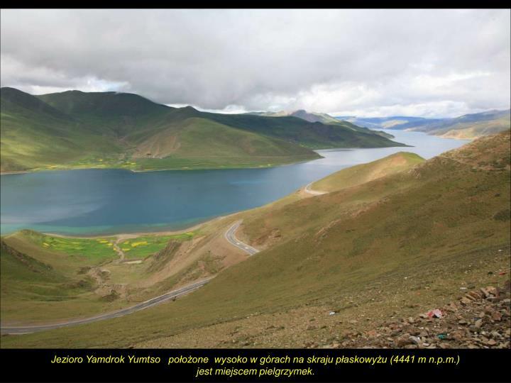 Jezioro Yamdrok Yumtso   położone  wysoko w górach na skraju płaskowyżu (4441 m n.p.m.)