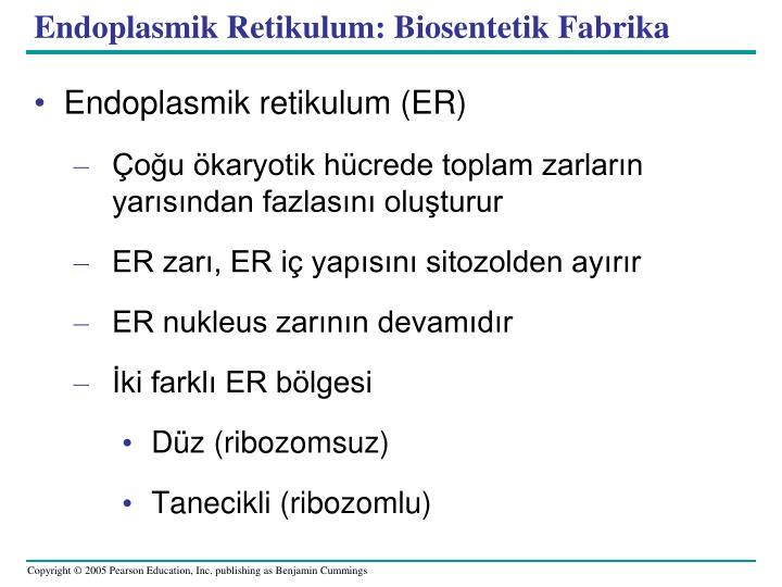 Endoplasmi
