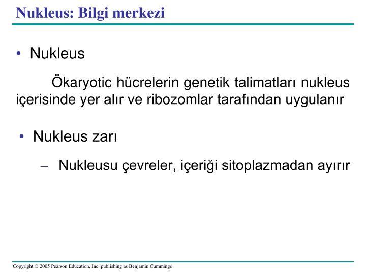 Nukleus: Bilgi merkezi