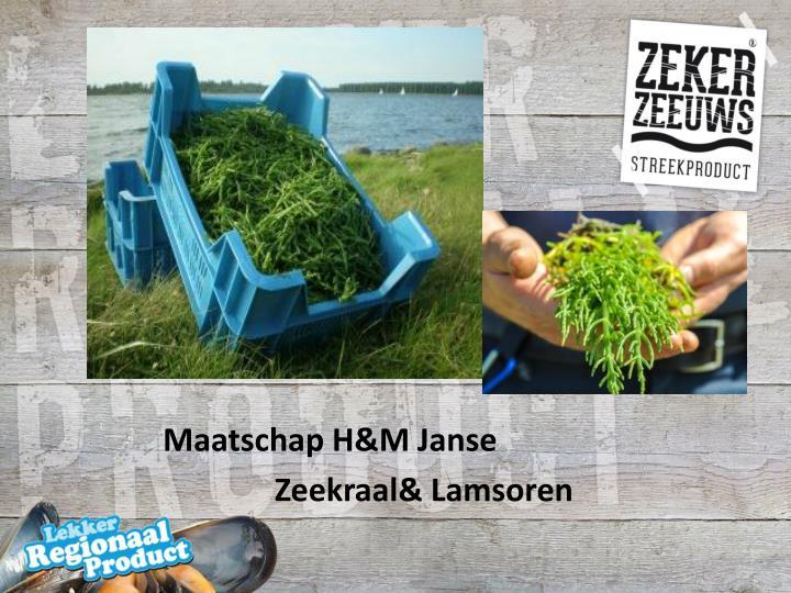 Maatschap H&M Janse