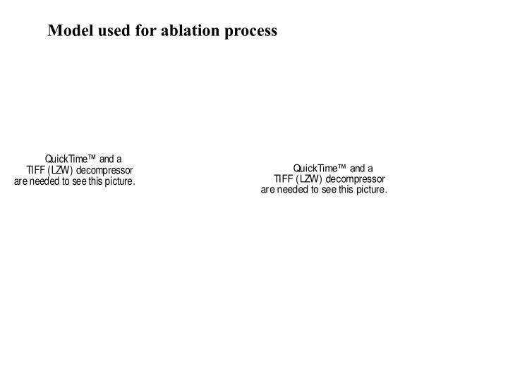 Model used for ablation process