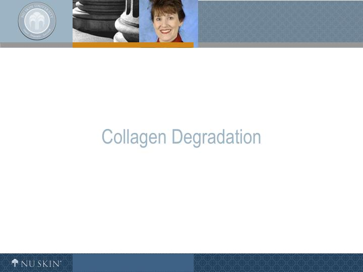 Collagen Degradation