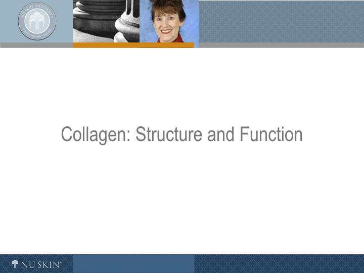 Collagen structure and function