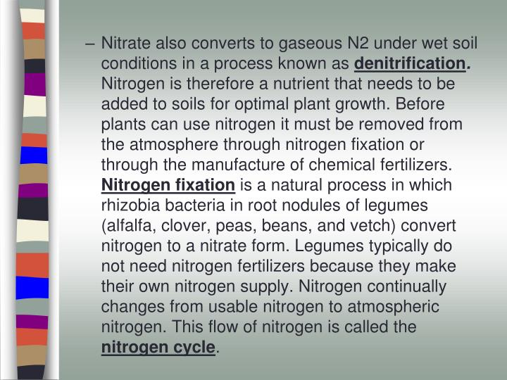 Nitrate also converts to gaseous N2 under wet soil conditions in a process known as