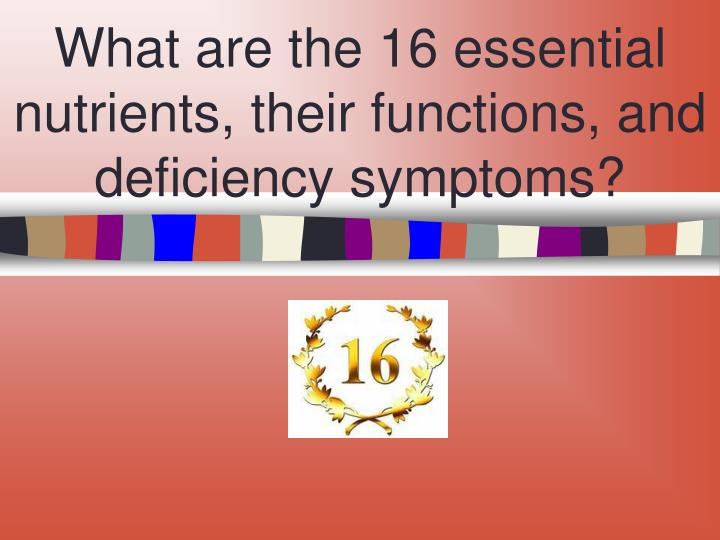 What are the 16 essential nutrients, their functions, and deficiency symptoms?