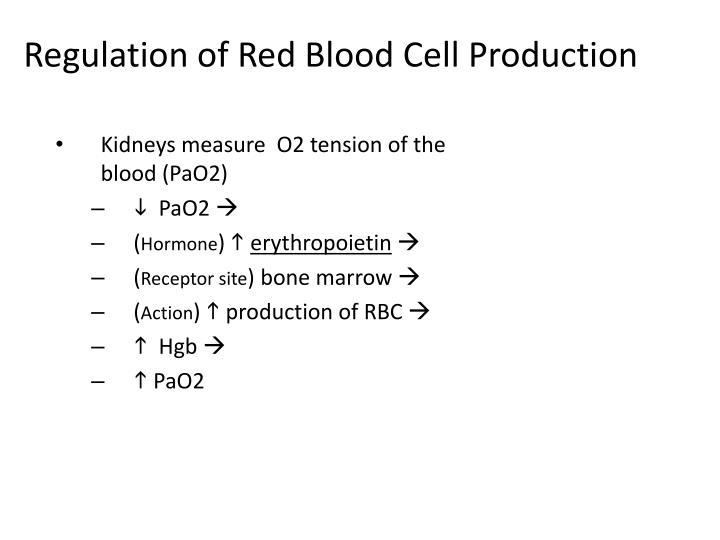 Regulation of Red Blood Cell Production