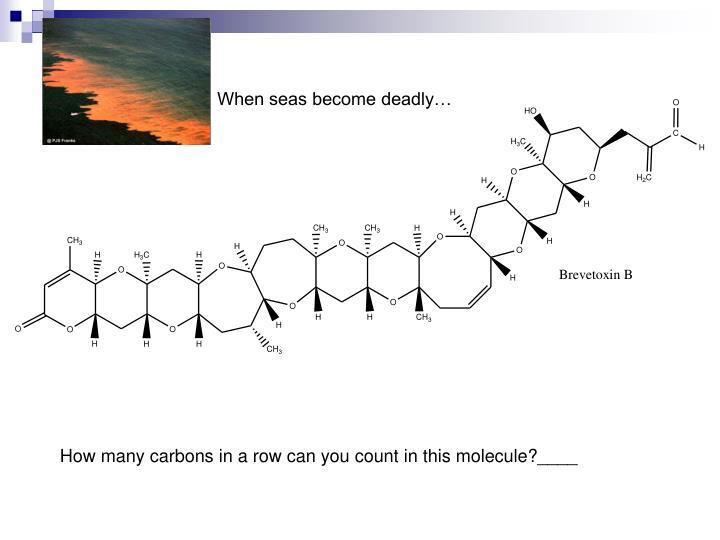 When seas become deadly…