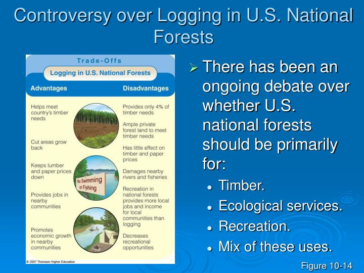 Controversy over Logging in U.S. National Forests