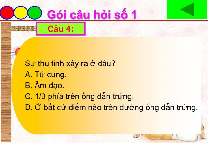 Câu 4: