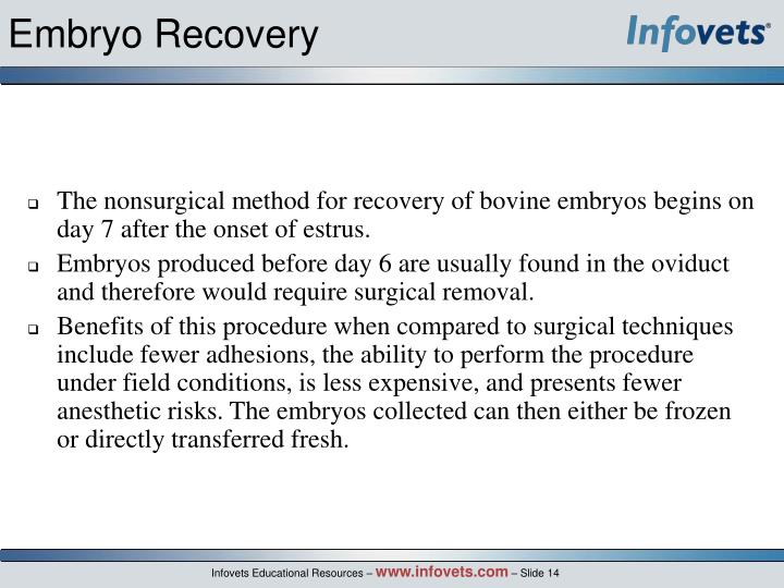 Embryo Recovery