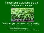 instructional librarians and the academic commons