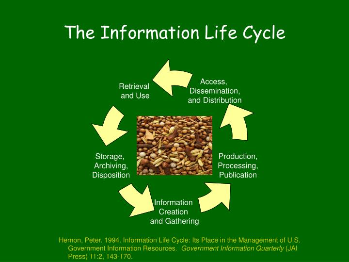 The Information Life Cycle
