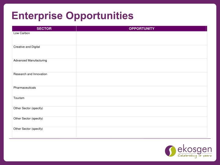 Enterprise Opportunities