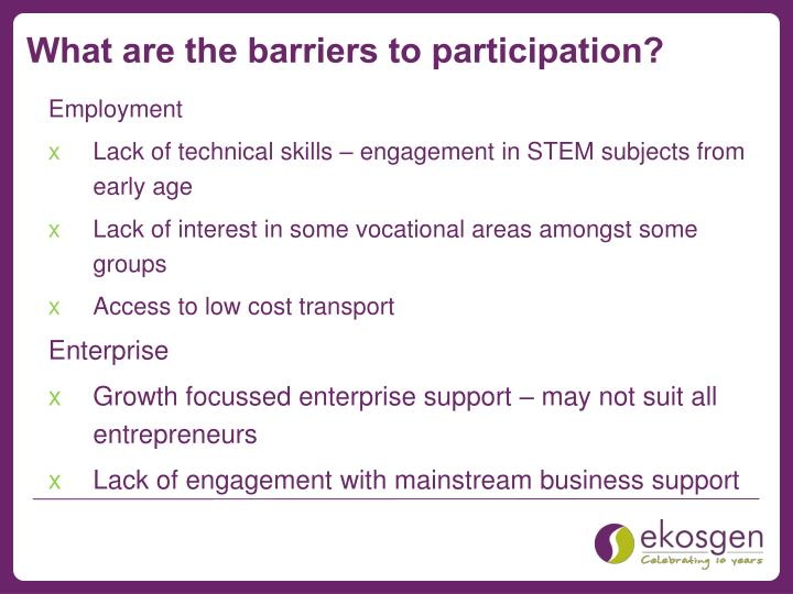 What are the barriers to participation?
