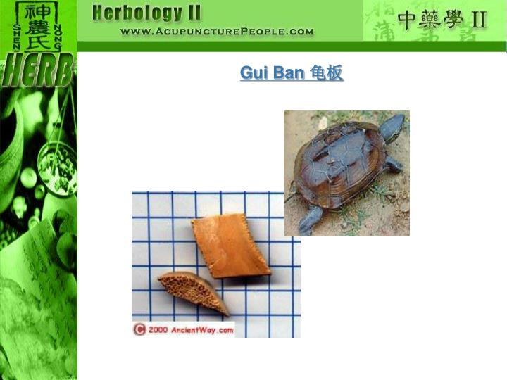Gui Ban