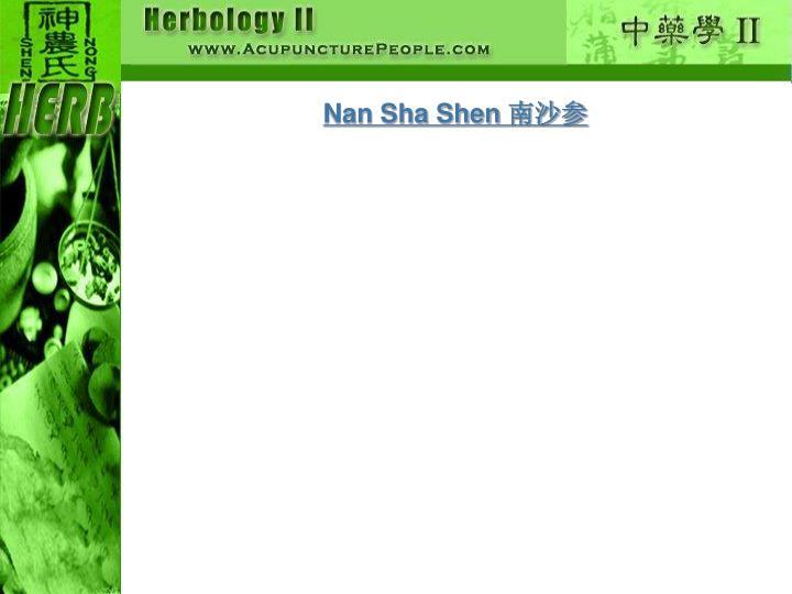 Nan Sha Shen