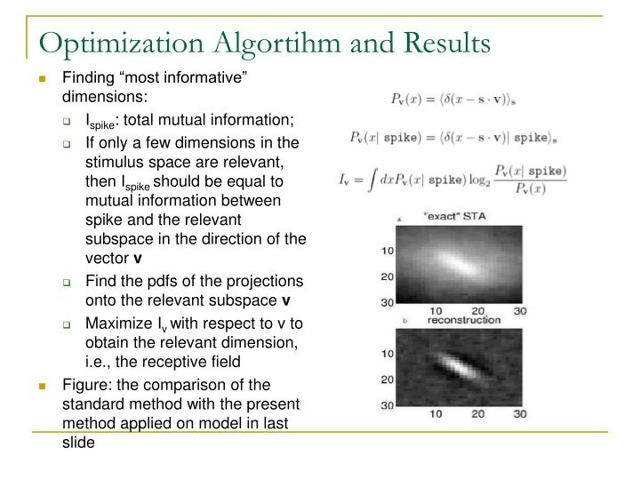 Optimization Algortihm and Results
