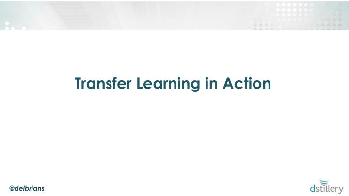 Transfer Learning in Action