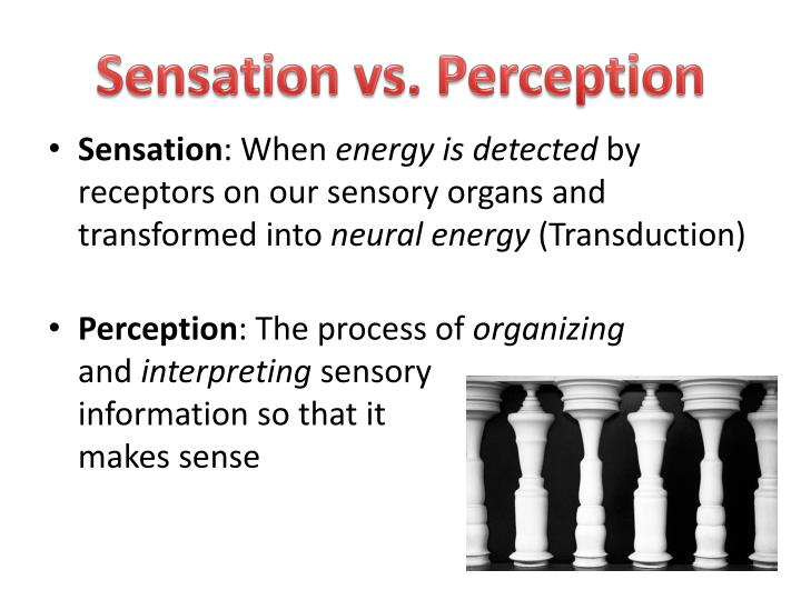 sensation vs perception essay Sensation and perception on visual art this research paper sensation and perception on visual art and other 64,000+ term papers, college essay examples and free essays are available now on reviewessayscom.