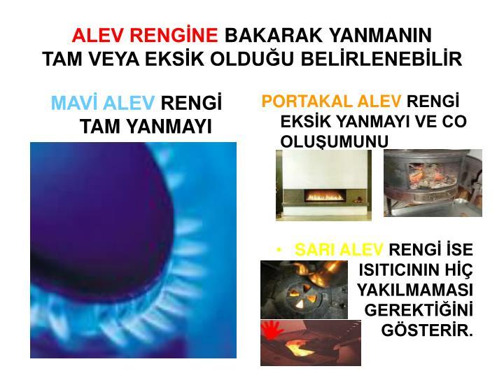 ALEV RENGİNE