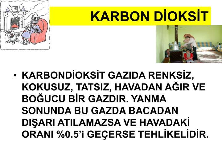 KARBON DİOKSİT