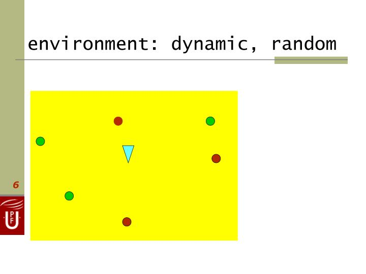 environment: dynamic, random