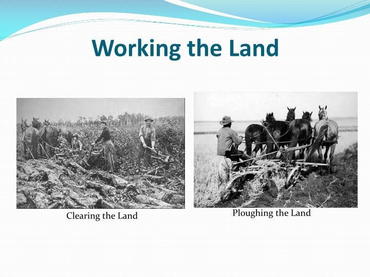 Working the Land
