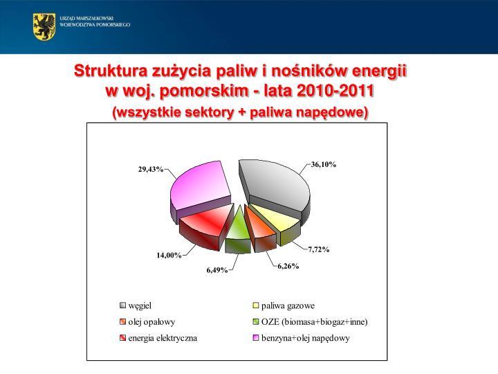Struktura zużycia paliw i nośników energii